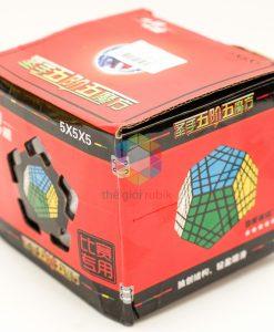Shengshou Gigaminx (1)